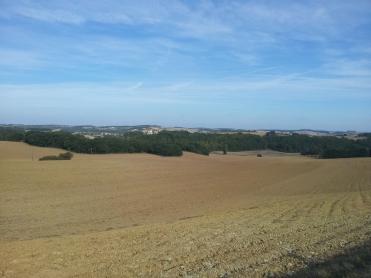 Bazian view